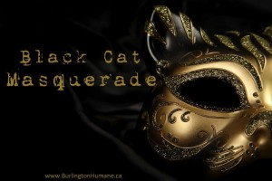 Masquerade Logo 4 small