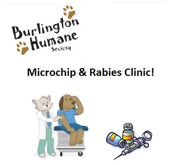 microchiprabiesclinicimage