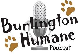 BH-Podcast-Logo-Small